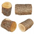 Set log fire wood isolated on white background with clipping path (high resolution) — Stock Photo #75221965