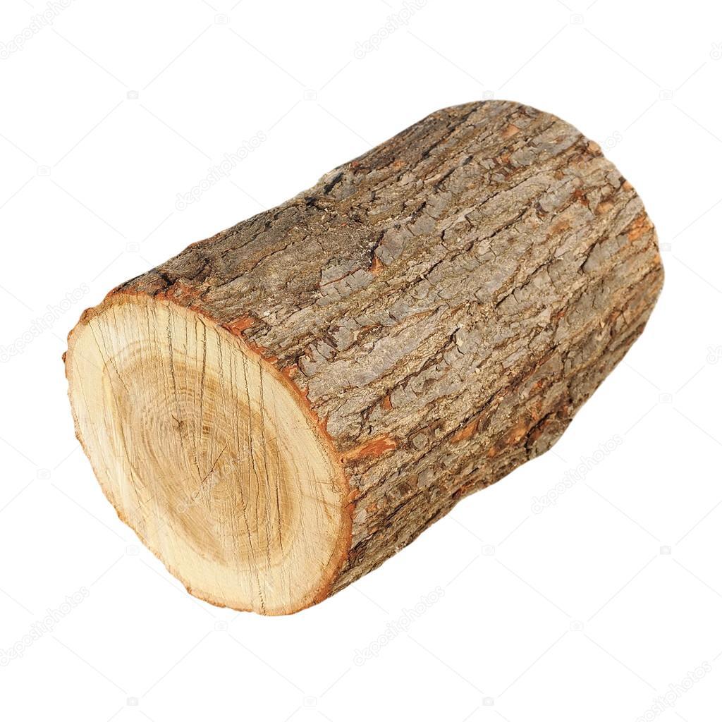 Ceppo di quercia legno del fuoco ceppo isolato su for Piani moderni della cabina di ceppo