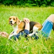 Woman with beagle — Stock Photo #54592003
