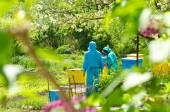 Beekeepers — Stock fotografie