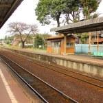 místní staré vlasti vlakové nádraží — Stock fotografie #72103587