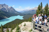 Peyto Lake ,Canada — Stock Photo