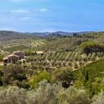 Landscapes of Tuscany in Radda Chianti — Stock Photo #53327099