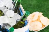 Cerveza fresca — Foto de Stock