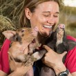 Veterinary with two pigs — Stock Photo #72885757