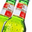 Постер, плакат: Bottle of Kronenbourg beer isolated on white