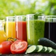 Glasses with fresh vegetable juices in the garden. Detox diet — Stock Photo #54615963