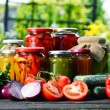 Jars of pickled vegetables in the garden. Marinated food — Stock Photo #54638069
