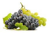 Two bunches of red and white grapes isolated on white — Stock Photo