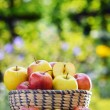 Organic apples in the garden. Balanced diet — Stock Photo #62154495