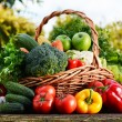 Wicker basket with assorted raw organic vegetables in the garden — Stock Photo #62155999