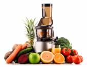 Slow juicer with organic fruits and vegetables isolated on white — Stock Photo