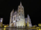 Gothic cathedral of Leon, by night — Stock Photo