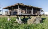 Horreo , Granary, typical Galician house — Stock Photo