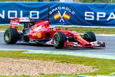 Team Scuderia Ferrari F1, Fernando Alonso, 2014 — Stock Photo