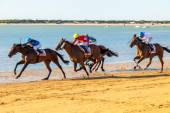 Horse race on Sanlucar of Barrameda — Stock Photo