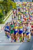 XXVIII Half Marathon Bahia de Cadiz — Stok fotoğraf