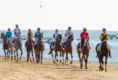 Horse race on Sanlucar of Barrameda — Stockfoto