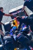 Team Red Bull F1, Sebastian Vettel — Стоковое фото