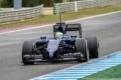 Team Williams F1, Felipe Massa, 2014 — Stock Photo