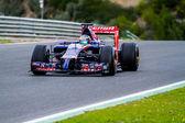 Team Toro Rosso F1,  Jean-Eric Vergne, 2014 — Stock Photo