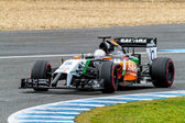 Daniel Juncadella of Force India F1 — Stock Photo