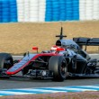Постер, плакат: Team McLaren Honda F1 Jenson Button 2015