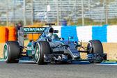 Mercedes AMG Petronas F1,  Nico Rosberg, 2015 — Stock Photo