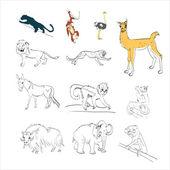 Panther, monkey, ostrich, llama, lion, cheetah, mule, donkey, ho — Vettoriale Stock