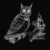 Owl books and candles knowledge drawing chalk on a blackboard ve — Stock Vector