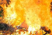 Arson or natural disaster — Stock Photo