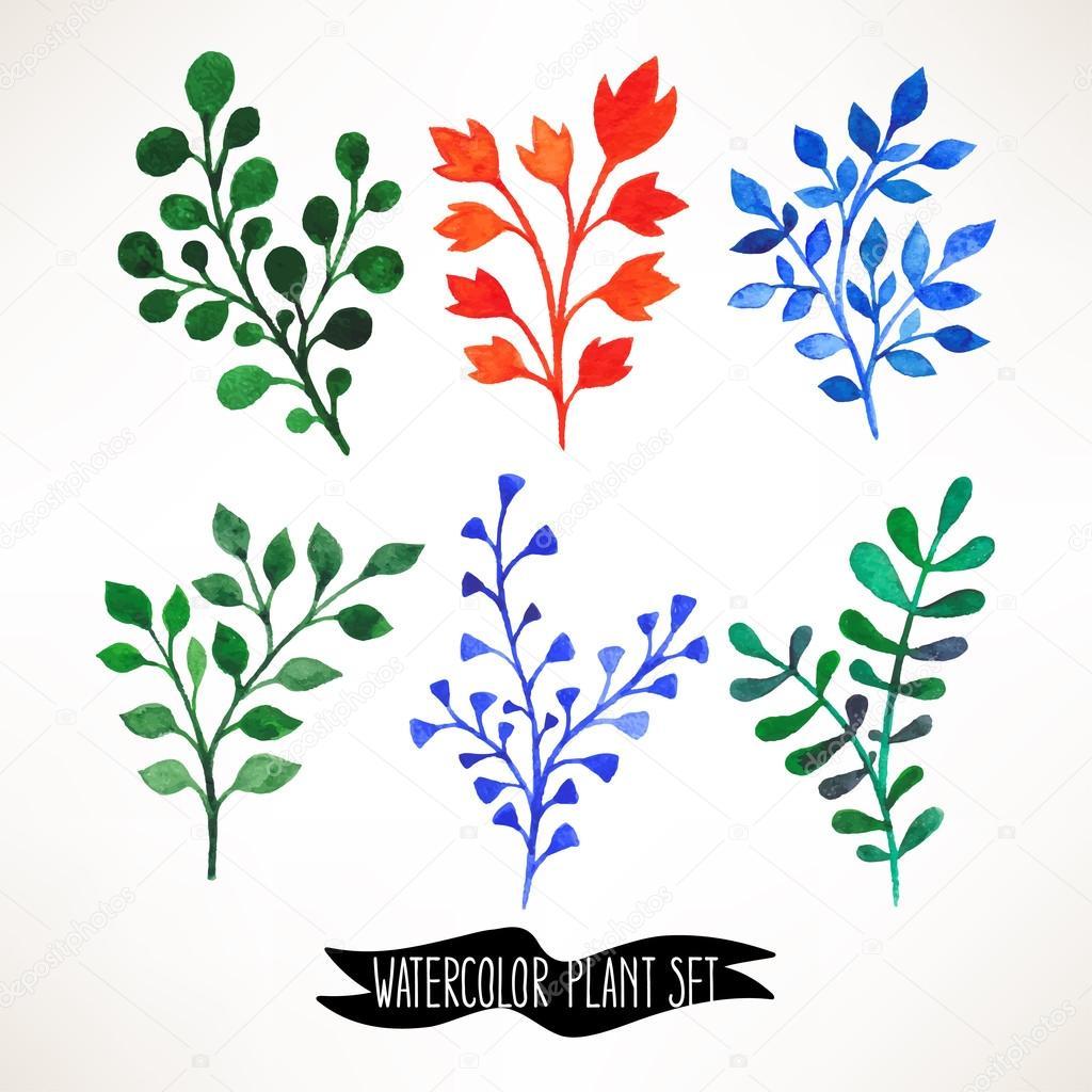 套六可爱水彩手绘植物– 图库插图