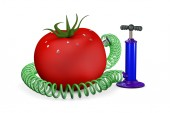 Pump swings air in a tomato — Stock Photo