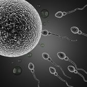 Sperm and egg cell. microscopic — Stock Photo