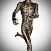 Human radiography scan  with bones — Stock Photo