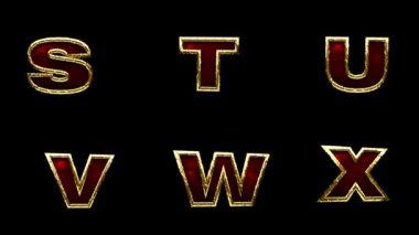 Loop alpha matted golden alphabet — Stock Video