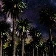 Star Time Lapse, Milky Way Galaxy Moving Across the Night Sky and Palms — Stock Video #71242749