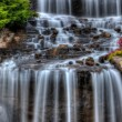 Постер, плакат: Silky Waterfall in High Dynamic Range