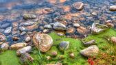 HDR of River edge rocks — Stock Photo