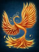 Magic firebird — Stock Photo