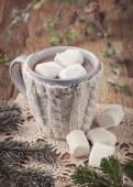 热巧克力和棉花糖 — 图库照片