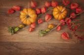 Orange pumpkins and physalis  — Stock Photo