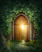 Mysterious entrance — Stock Photo