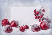 Blank sign with christmas decorations — Stock Photo
