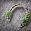 Old rusty horseshoe and four leaf clover — Stock Photo #62865271
