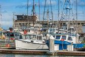 Marina in San Francisco — Stock Photo