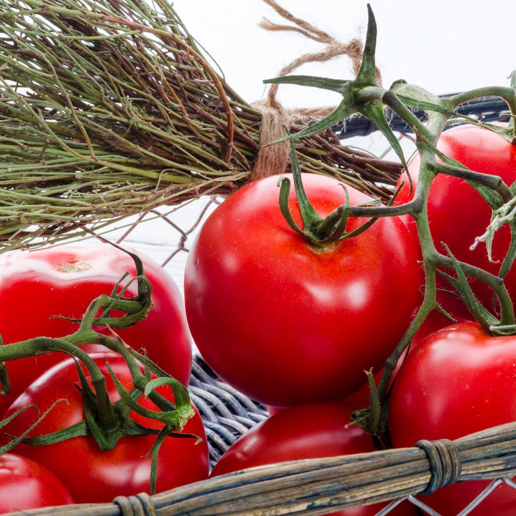 Tomaten in de mand — Stockfoto