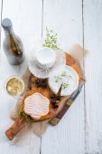 Cheese plate — Stock Photo