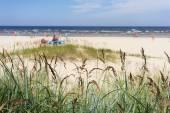 The sandy beach of the Baltic Sea on a summer day season — Stock Photo