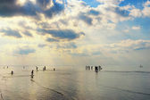 Silhouettes of people walking in the sea after the tide — Stock Photo